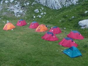 Zelte kaufen